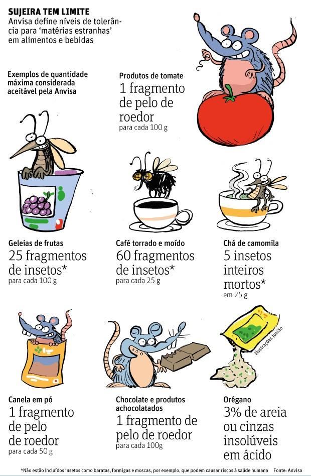 rais-data-insetos-na-comida-texto