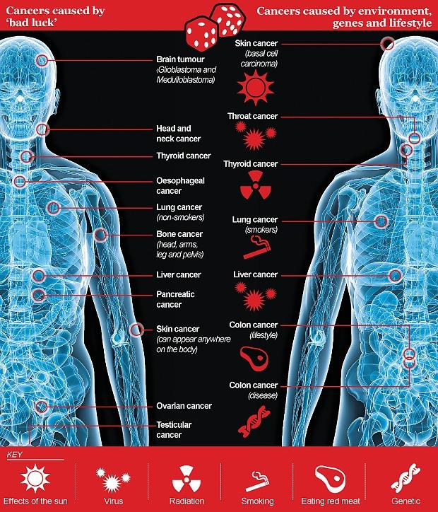 Câncer: Mutações genéticas aleatórias é a principal causa da maioria dos tipos