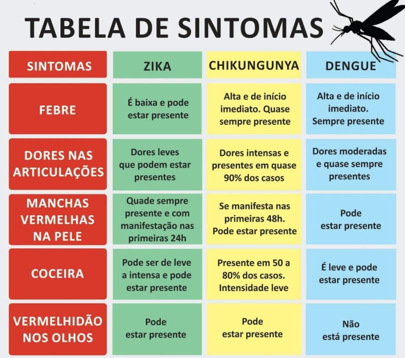 zika dengue